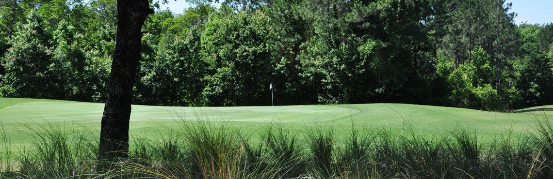 My Homepage - The Golf Club at South Hampton
